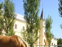 Alexanderhof - Blick von der Koppel