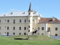 Alexanderhof - Trainigshügel