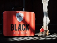 black_see_the_unseen_social